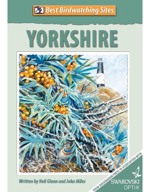Birding Yorkshire